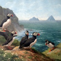 Puffins with Skellig view