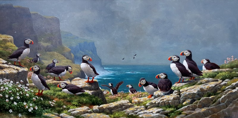 KAGP248-Julian-Friers-Puffin-Colony-120x60-18000